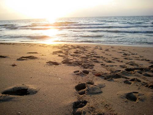 Sun hits the Beach | by RichardBH