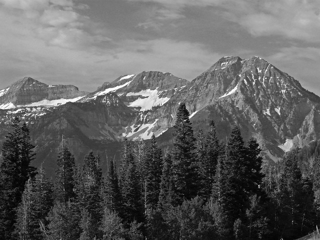 Rocky Mountains in Black and White
