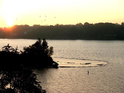maumee river walbridge park toledo ohio sunrise nature water