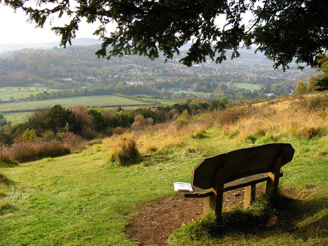 Bookcrossing at Box Hill, Surrey