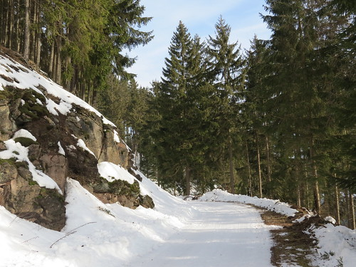 outdoor nature ohra dam stausee wald forest