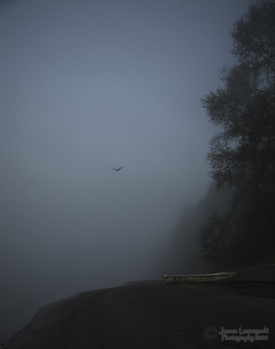 morning fog vancouver river geotagged bravo fort fraser langley firstquality janusz littlestories leszczynski damniwishidtakenthat geo:lat=49172796 geo:lon=122576169