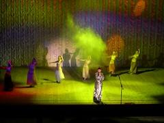 Ak Gulder Performance-93