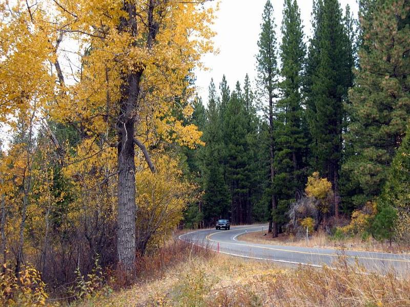 Photo Hunt #8:   Road