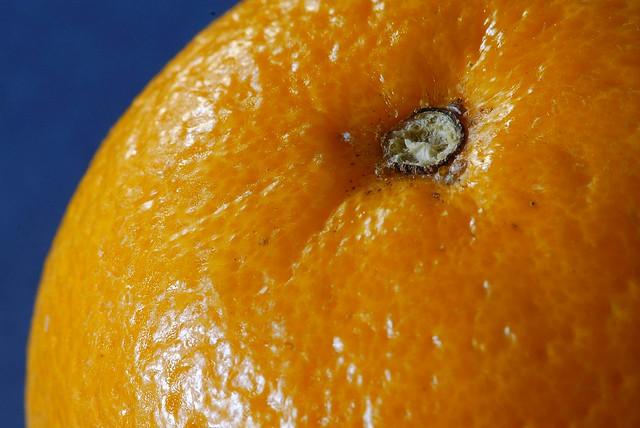 Orange Sample