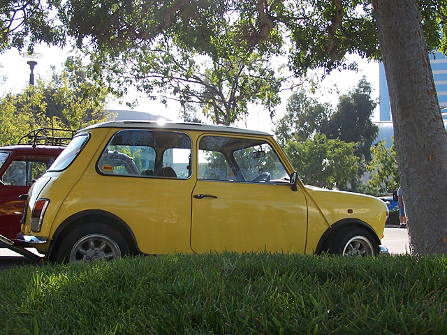 yellow Mini.jpg