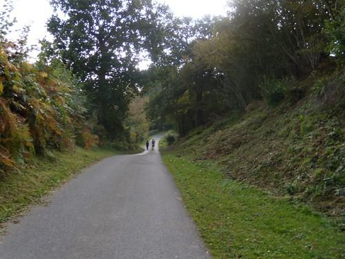 Down a lane Cowden to Eridge