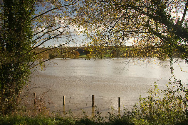 Flooded banks of the River Medway near Penshurst