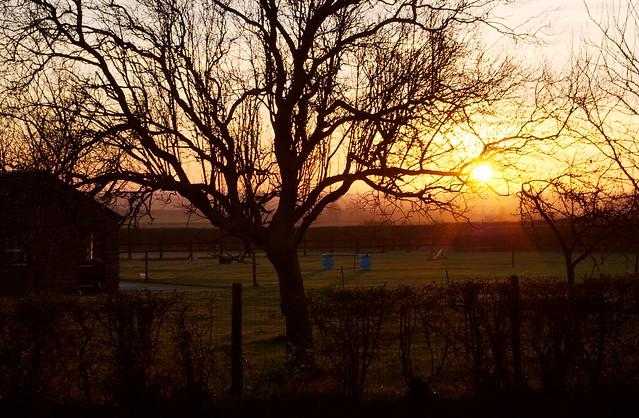 imgp7753 - Winter Sunset