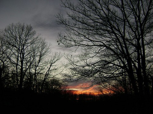 trees sunset clouds connecticut overcast waterbury