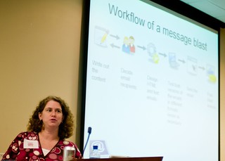 Sandi Solow on Workflow of an Email Marketing Campaign   by MikeSchinkel