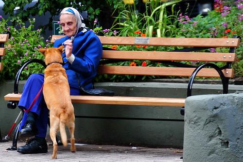 Feeding the dog | by Ed Yourdon