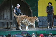 Wild Animal Show