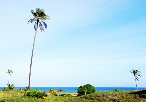 Praia do Conde - BA