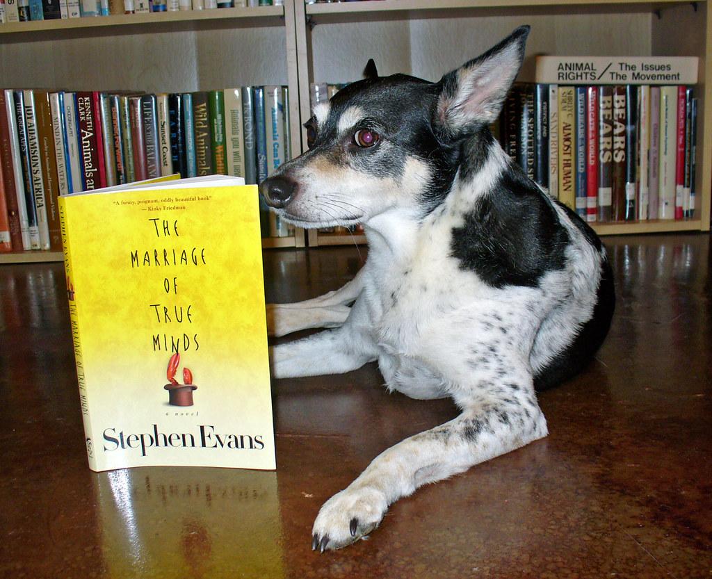 2008 06 02 Peedee Hearts Wolfrum 0016 Book Review border=