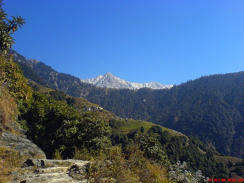 Path to Triund and Dhauldhar mountain-reup