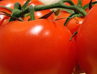 tomate 04 | by -Merce-