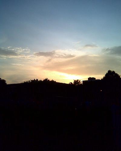trees sunset sky building louisiana lafayette 365 chialpha universityoflouisianaatlafayette ullafayette universityoflouisiana welcomebbq