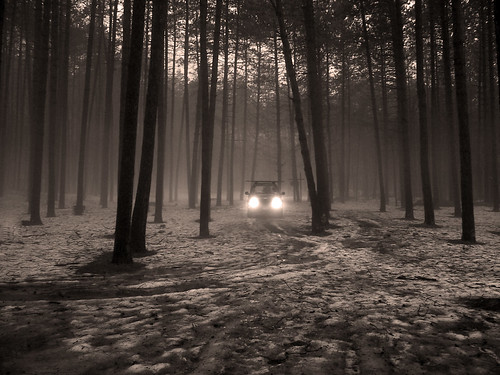 bw white snow black color tree nature water rain fog woods mood jeep awesome adk
