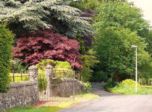 Arboreal Glenfarg . | by B4bees