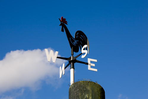 Wind direction - Day 44 of Project 365 | by purplemattfish