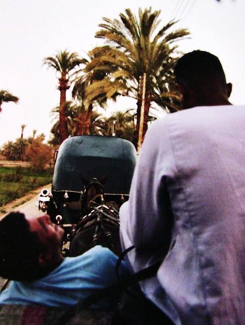 Kutschfahrt in Luxor