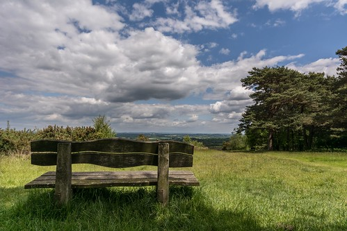 england tree clouds bench spring nikon alone shadows viewpoint eastsussex ashdownforest lr6 sigma1020f456 d7100