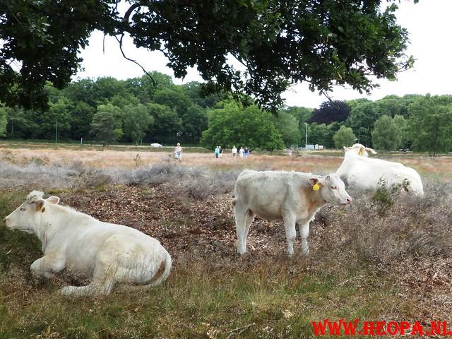 2015-06-27 F.K.C. 't Gooi Wandeltocht 36.4 km (56)