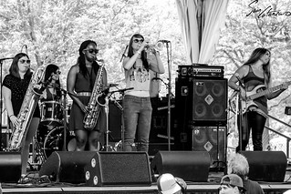 Horn Section | by Sam Catanzaro