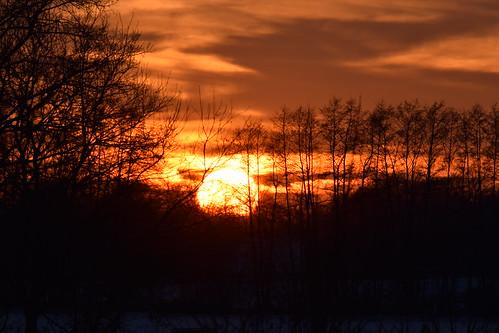 sky himmel clouds wolken sun sonne sunset sonnenuntergang glowingglühen light licht trees bäume lohne wiemarschen grafschaftbentheim fire feuer