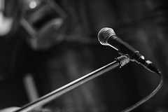 The Mic   by Esparta
