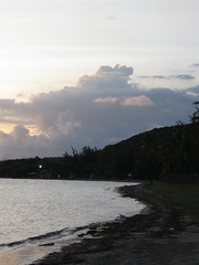Guánica State Forest