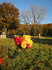 Oakwood Cemetery - Troy, NY - 23 by sebastien.barre