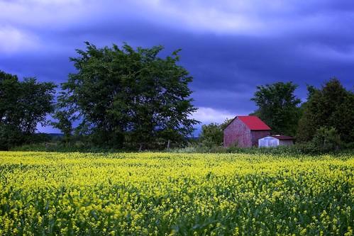 storm clouds farm fields 365 darkclouds
