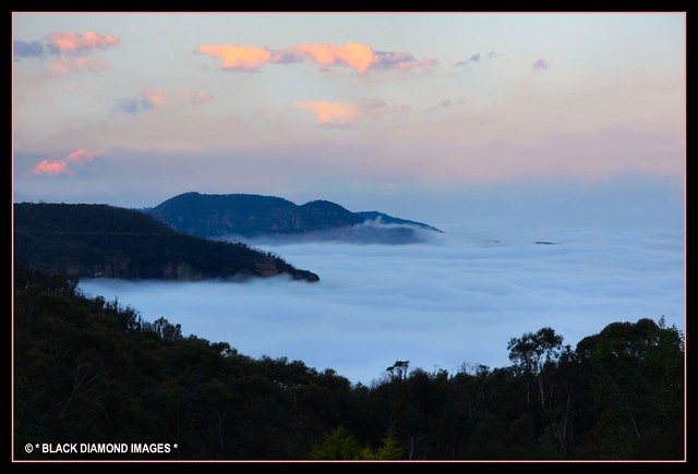 Cloud in the Grose Valley - Sally's View - Oct 2008