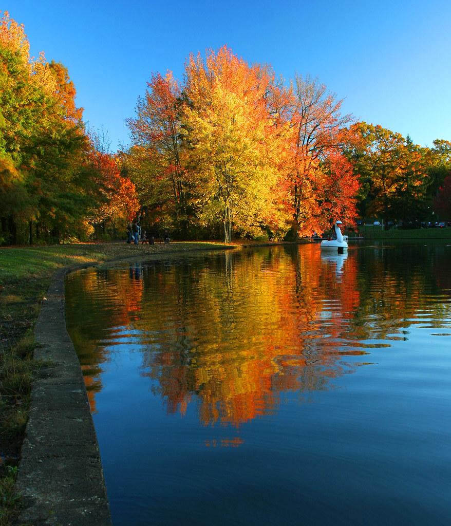 Roger Williams Park: Foliage At Roger Williams Park