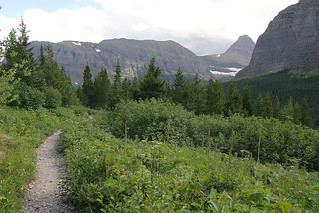 Glacier National Park - August 2008 | by mschutt