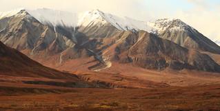 Fall colors in Denali National Park, Alaska | by Alaskan Dude