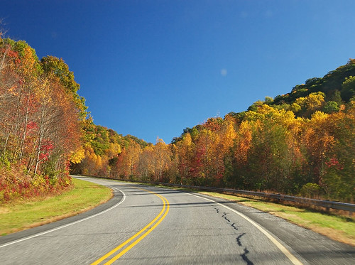 blue autumn red usa mountain tree fall nature leaves yellow forest landscape outdoors fire leaf nc scenery view unitedstates south great scenic northcarolina ridge southern parkway vista smoky attraction carolinas deepsouthappalachia