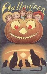 Halloween Pumpkin Black Cats | by senses working overtime