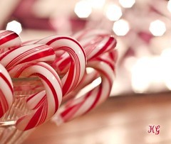 """The Real Beauty Of The Candy Cane.... 