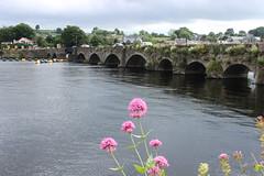 Sungai Shannon