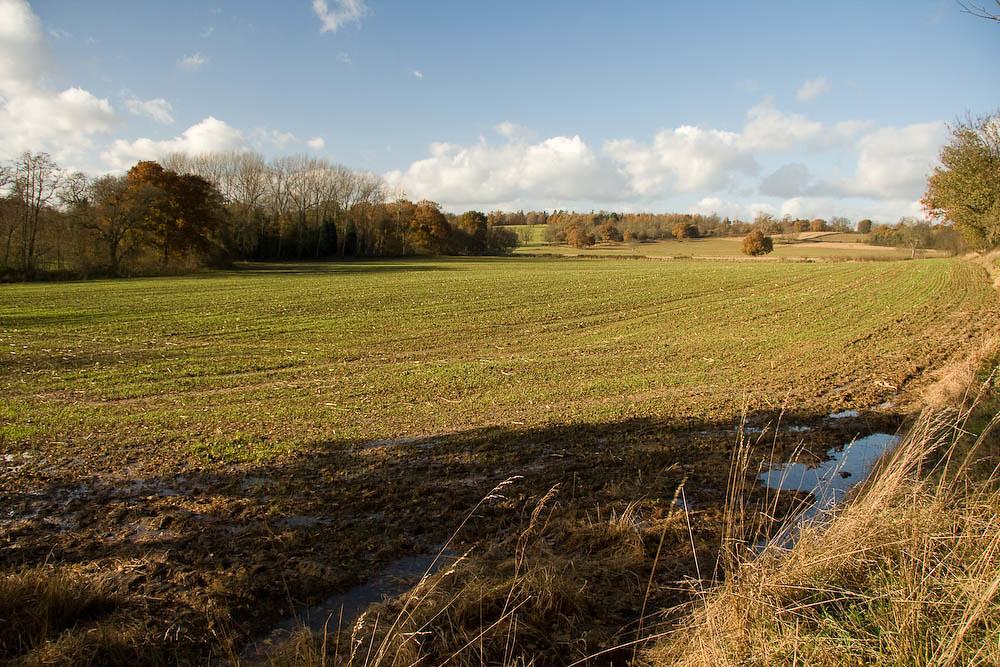 the Kent countryside near Penshurst