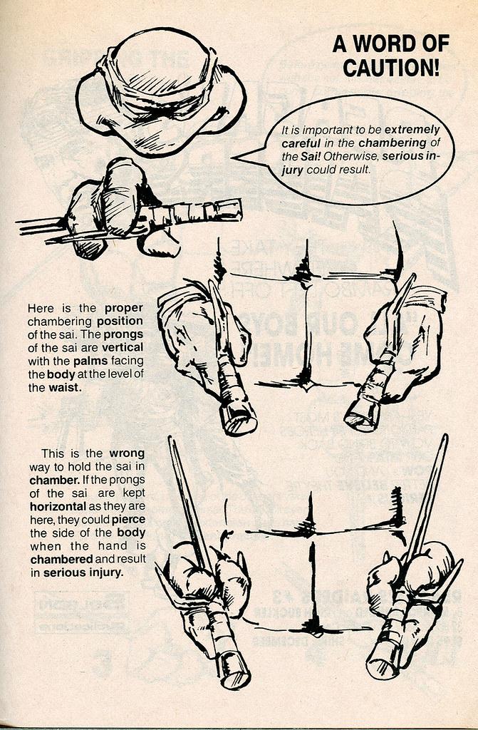 SOLSON PUBLICATIONS Authorized Martial Arts Training Manua