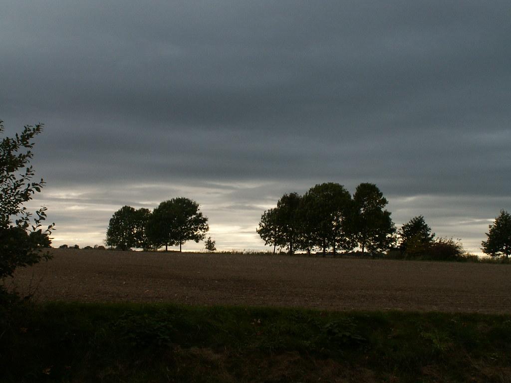 Der herbstliche Laubfall vom Baum wird also nicht in erster Vorgabe durch Frostwetter im Hochland und intensive Luftströmung ausgelöst, sondern ist das Endergebnis eines regen Geschehens zur Vorbereitung auf die bescheuerte kalte Jahreszeit nach der Wintersaat 017