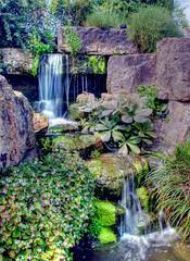 Rockery, Kew Gardens