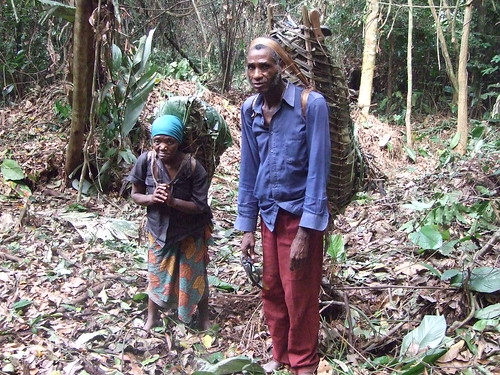 all ages transport bushmeat