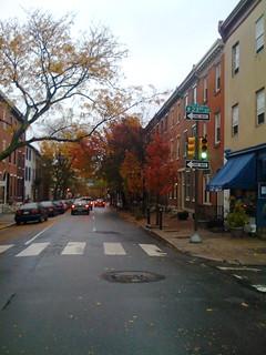 fall leaves | by visnup