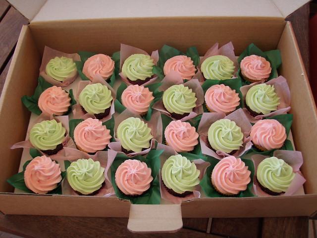 Mossy's Masterpiece Plain buttercream swirl cupcakes pink/mint