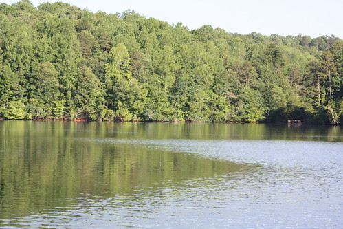 trees summer water reflections nc fishing hickory lakehickory catawbacounty